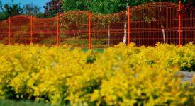 pomarańczowe ogrodzenie panelowe